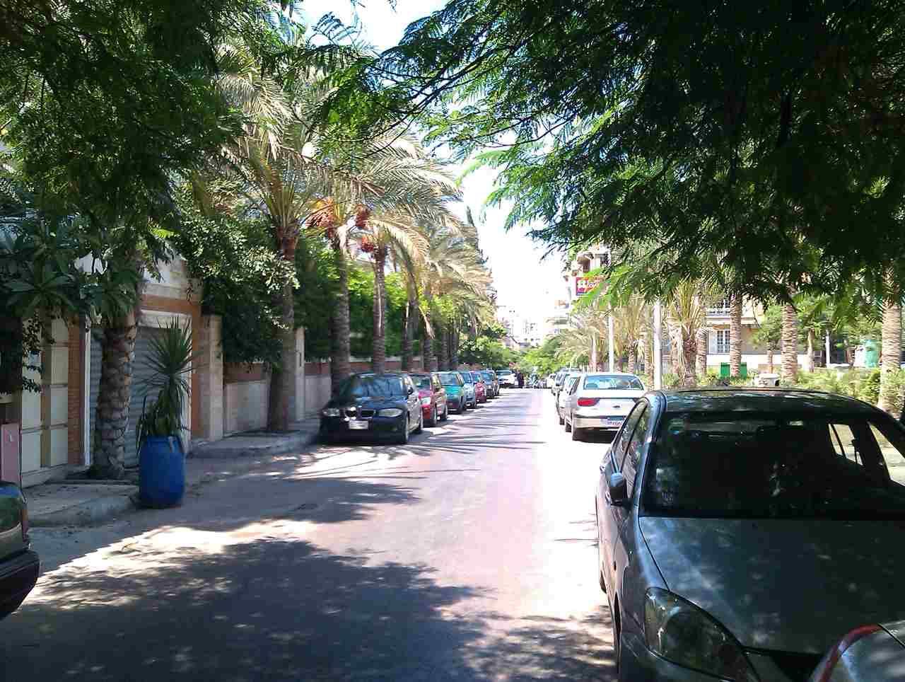 شراء عقارات في الإسكندرية - كفر عبده