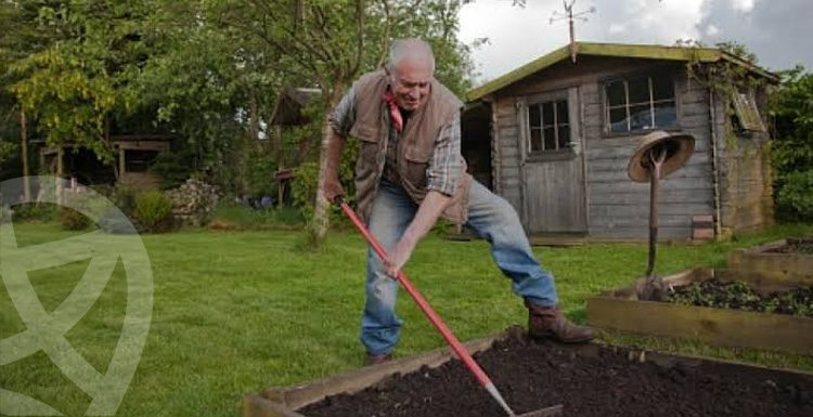 6 Important Tips You Need to Know Before planting your Garden